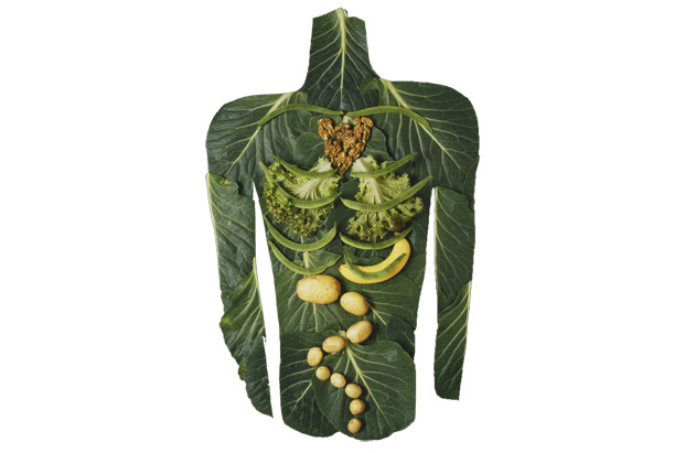 Heal-Your-Digestive-Problems-Naturally